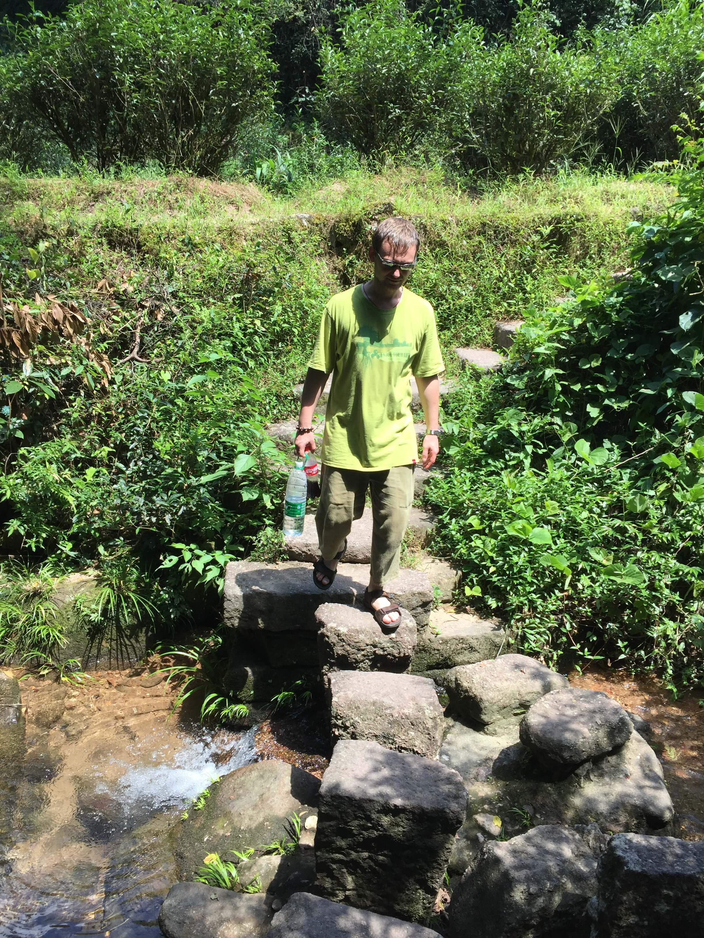 wuyi mountain tea trails